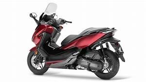 Scooter Forza 125 : honda renueva el scooter forza 125 ~ Medecine-chirurgie-esthetiques.com Avis de Voitures