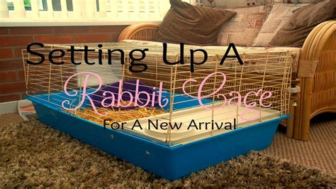 Setting Up A Rabbit Cage For A New Arrival  Rosiebunneh