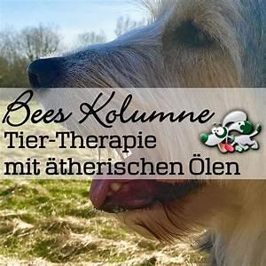 ätherische öle Läuse : therische le f r die therapie von tieren flora apotheke hannover ~ Whattoseeinmadrid.com Haus und Dekorationen