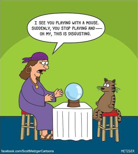 hilarious cat cartoons     face