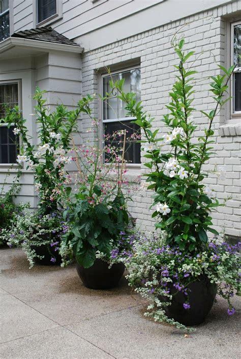 40 pots de fleurs qui vont allumer votre imagination archzine fr