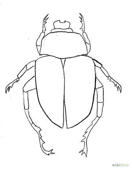 draw beetle google meklesana beetle art