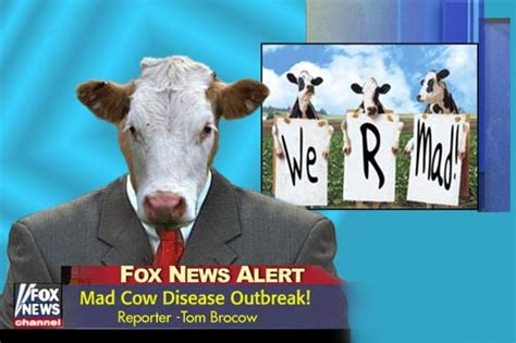 Mad Cow Disease Meme - mad cow disease outbreak cows on news funny graphics for facebook tagged facebook tumblr