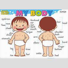 Body Parts  Miss Amy's English Classroom