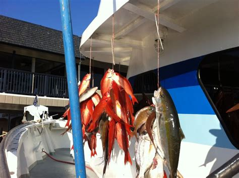 Party Boat Deep Sea Fishing Panama City Beach Fl by 301 Moved Permanently