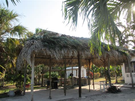 Palapa Thatch by The Wright Time In Belize Thatching The Palapa
