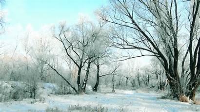 Forest Winter Stonehenge Wallpapers Backgrounds Wallsdesk