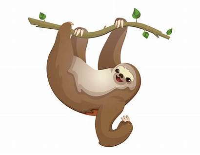 Sloth Transparent Clip Clipart Drawing Library