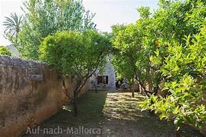 Ferienwohnung Auf Mallorca Kaufen : ferienwohnung sa soll finca es pla de llodra auf nach ~ Michelbontemps.com Haus und Dekorationen
