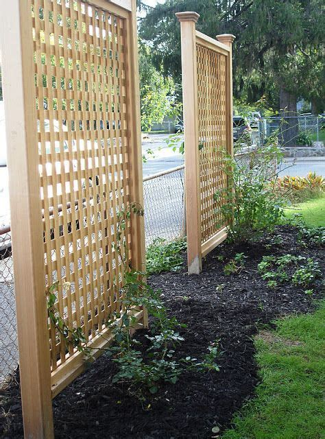 lattice fence with vines block the view of the neighbor s house with vertical trellises and climbing vines outdoor