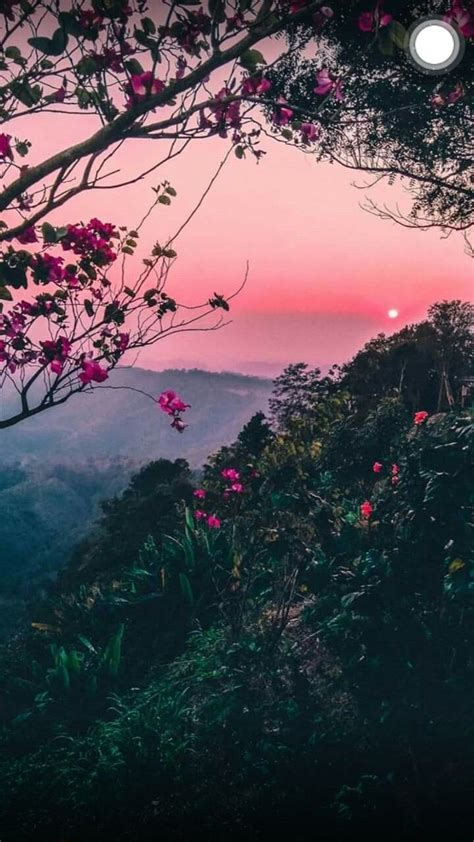 aesthetic nature background hd wallpapers backgrounds