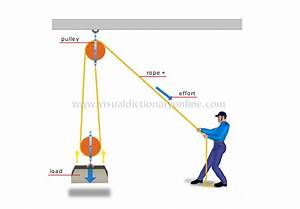 Science    Physics  Mechanics    Double Pulley System