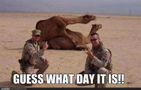 Dirty Hump Day Memes - mr morbid s house of fun back issue spotlight night tribes one shot