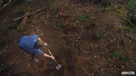 How To Bury A In The Backyard by Dig Grave Gifs Find On Giphy