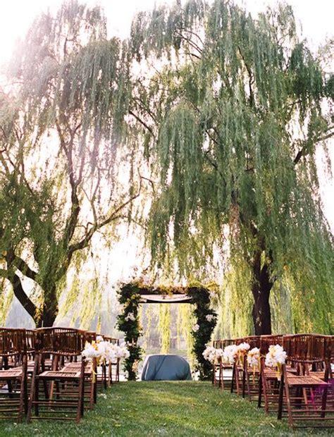 ideas  willow tree wedding  pinterest