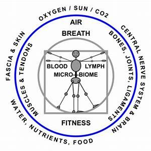 Medical Yoga Therapy, Yin Yoga, Structural /Postural Bodywork