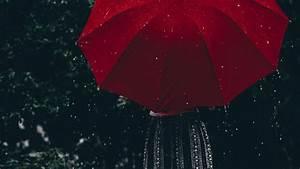 Woman, Holding, Umbrella, During, Rain, Hd, Photo