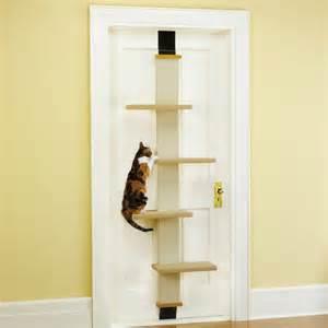 cat climber the door cat climber the green