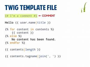 twig templating With twig template variables