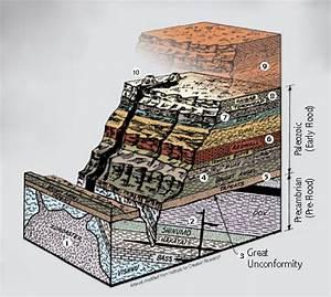 Grand Canyon In Biblical Perspective  U00bb Alpha Omega Institute