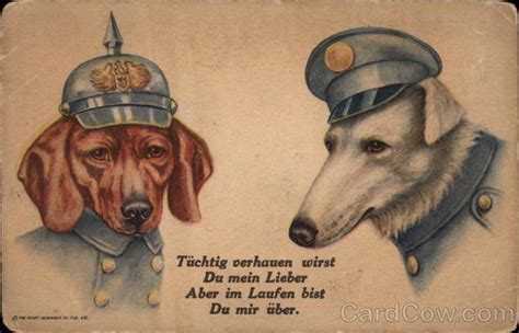 dogs  german army uniforms