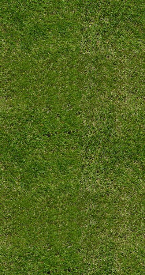 green grass  royalty  texture