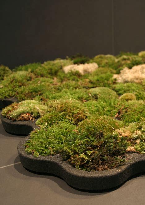 living moss bath mat reubenmiller live moss carpet