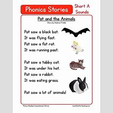This Reading Comprehension Worksheet  Pat And The Animals Is For Teaching Reading Comprehension
