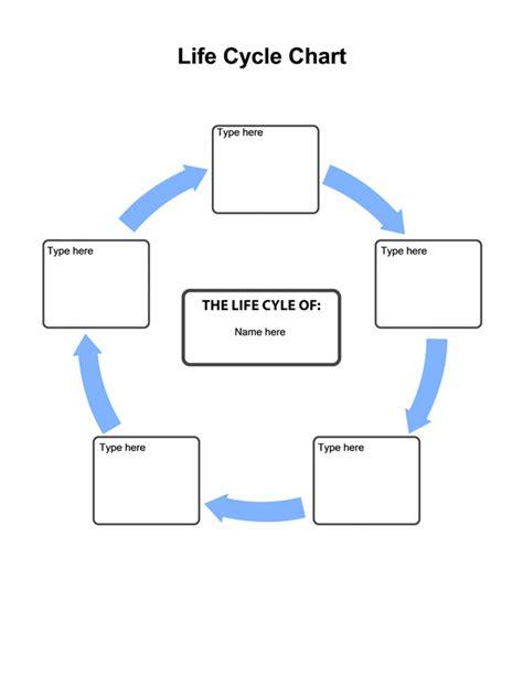 life cycle chart chart templates