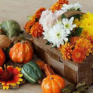 Dekoideen Herbst Winter : herbstdekoration tipps f r herbstliche dekoration auf balkon und terrasse ~ Markanthonyermac.com Haus und Dekorationen