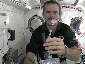Living In Space Is No Worse Than Being On A Long Business ...