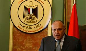 Egypt criticises 'foreign' comments on the state of NGOs ...