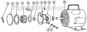 Jabsco Pump Wiring Diagram : jabsco 11810 0003 parts list ~ A.2002-acura-tl-radio.info Haus und Dekorationen
