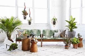 Zimmerpflanzen Für Kinderzimmer : pflegeleichte zimmerpflanzen die nie eingehen fresh ideen f r das interieur dekoration und ~ Orissabook.com Haus und Dekorationen