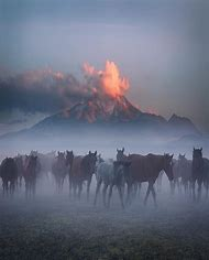 Incredible Landscape Photography