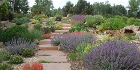 xeriscape pictures xeriscaping ideas landscaping network