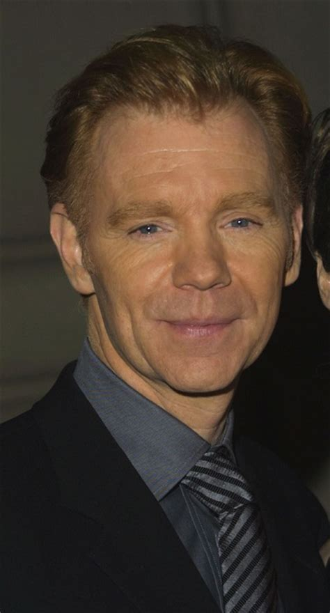 david caruso partner david caruso ethnicity of celebs what nationality