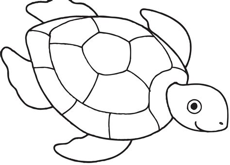 Turtle Coloring Page Coloring Book Coloring Pages 22910