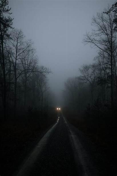 Forest Dark Wallpapers Background Fog Lights Unsplash