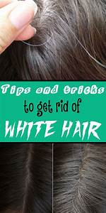 Tips And Tricks To Get Rid Of White Hair We The O39jays