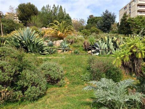 Botanischer Garten Nizza by Botanical Garden Of Photo De Jardin Botanique