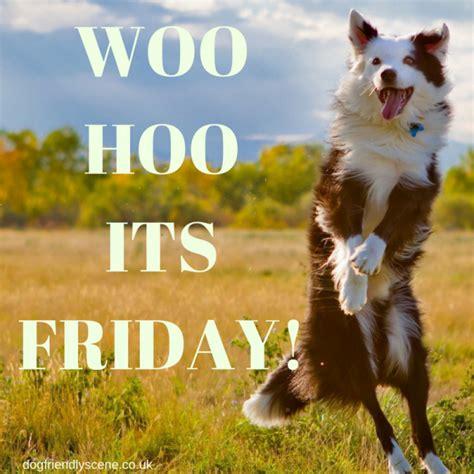 woo hoo  friday
