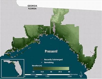 Florida Coast Gulf American Rising Native Seas