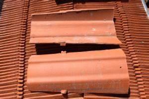Tuile Tige De Botte : tuile fond plat rouge de 40 ~ Premium-room.com Idées de Décoration
