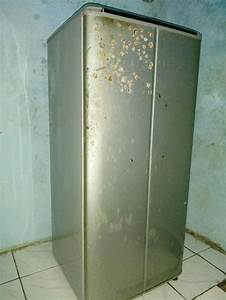 Jual Kulkas Sanyo 1 Pintu Bekas Di Lapak Triaolshop Tria