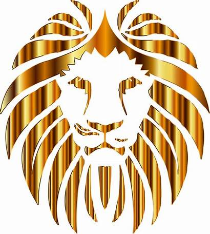 Lion Clipart Golden Crown Background Head Transparent