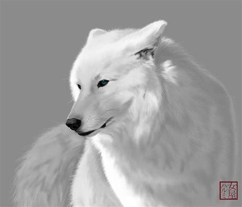 white wolves with bright blue search white wolves with bright blue white