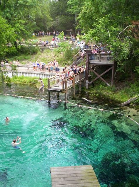 springs in florida with cabins 52 best images about florida springs on