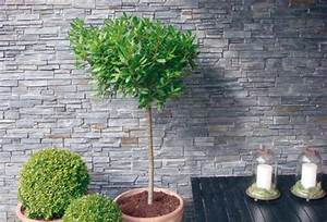 Haustüren Für Alte Häuser : modernes kleid aus naturstein f r alte h user ~ Michelbontemps.com Haus und Dekorationen