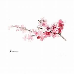 Best 25+ Cherry blossom background ideas on Pinterest ...